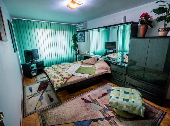 Apartamente Vidican in regim hotelier Timisoara (ap.3)