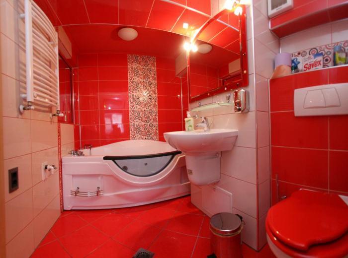 Appartamento attico con iacuzzi per vacanza Timisoara (app.6)