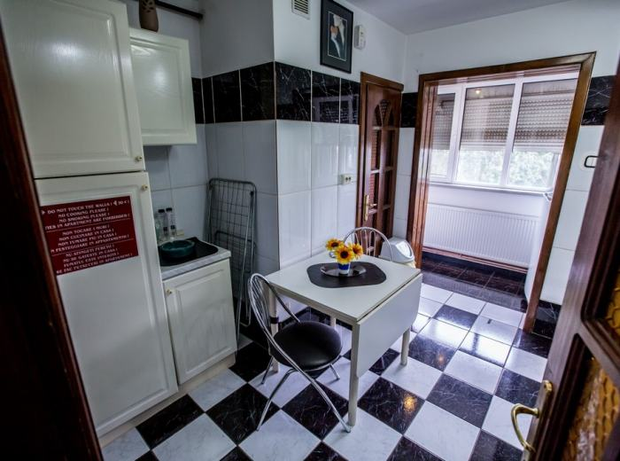 Vacation studio flat 3 for rent in Timisoara, bright kitchen